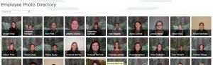 Index and Search of Employee Photo Directory